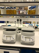 Dueling microcentrifuges